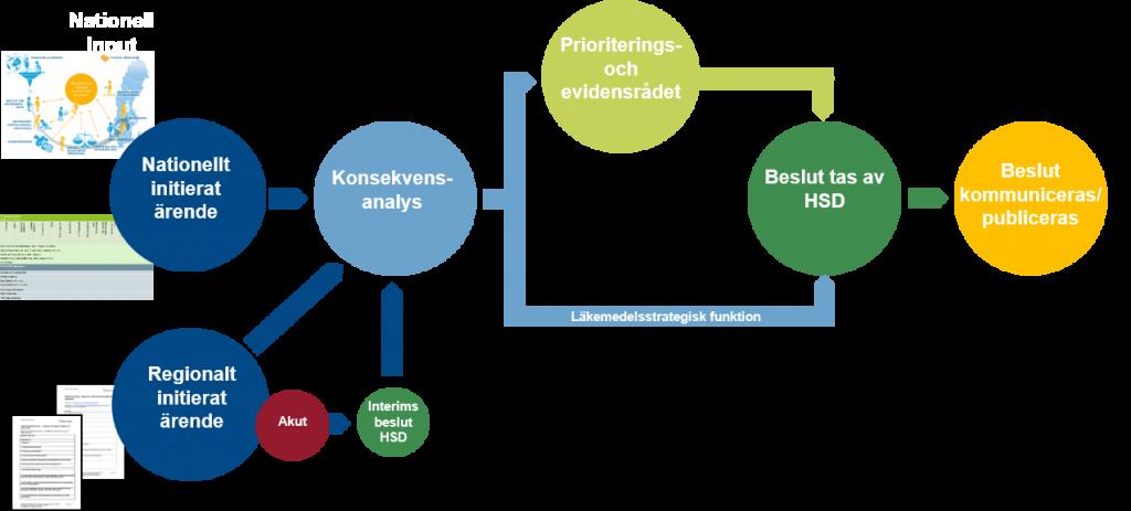 Processbild över ordnat införande av läkemedel Region Halland